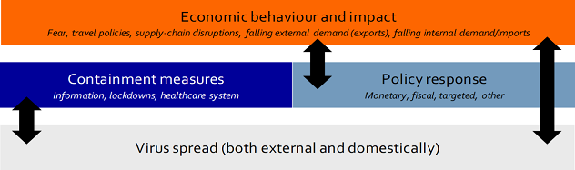 Figure 4: Many interactions that can either aggravate or attenuate the economic impact