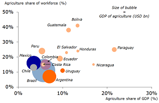 Figure 4: Latin America – agricultural GDP, agriculture´s share of GDP and agriculture´s share of the workforce (2012 and 2013 data)
