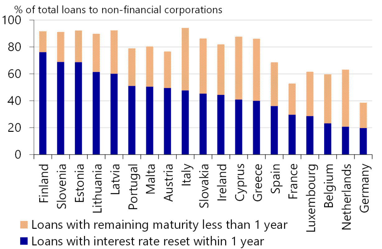 Can private debtors in the Eurozone weather interest rate