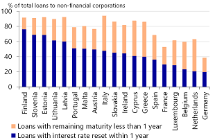 Figure 12: Corporate loans with (potential) interest rate reset within a year (2017)